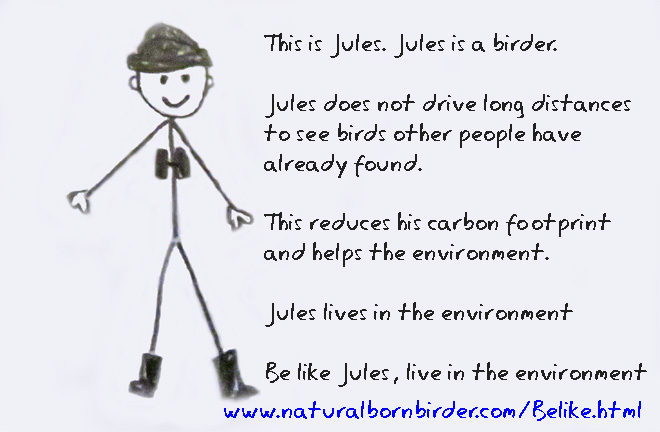 Be like a birder, environment