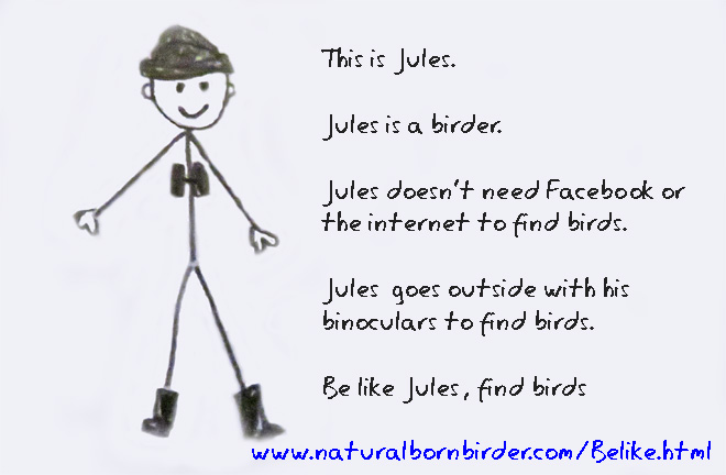 Be like a birder, internet