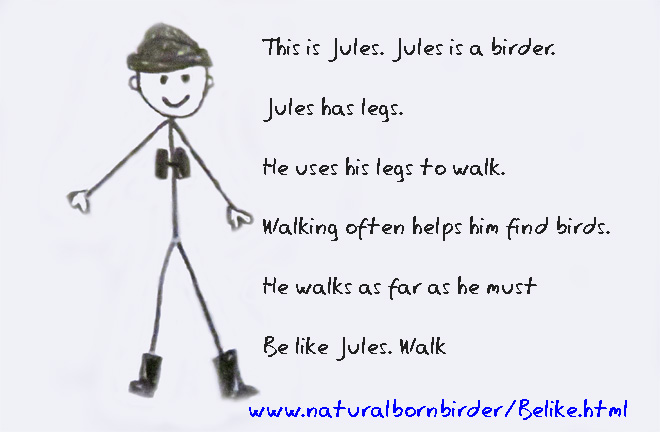 Be like a birder, legs