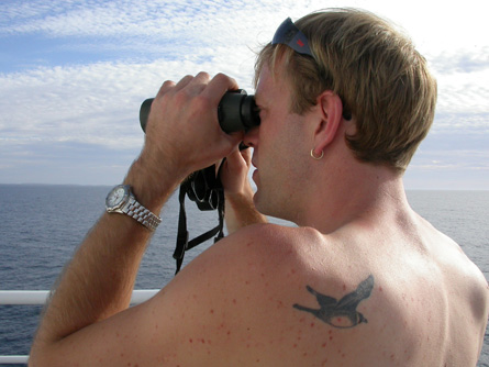 Click here to go to the birding tattoos page